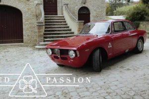 Este Alfa Romeo GTA é a paixão de qualquer piloto