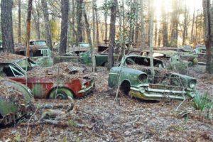 Cemitério com 200 clássicos descoberto em floresta