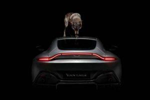 Beleza indomável com o novo Aston Martin
