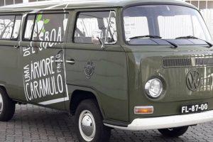 Câmara Municipal de Lisboa vai ao Caramulo Motorfestival em acção de reflorestação